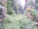 Lot 70 Running Deer Lane - Photo 4
