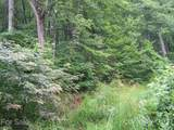 Lot 70 Running Deer Lane - Photo 7