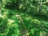 00 Nichols Ridge - Photo 7