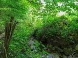 00 Nichols Ridge - Photo 9