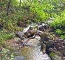 601 Indian Camp Creek Road - Photo 5