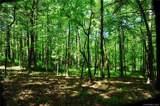 27 Deep Creek Trail - Photo 3