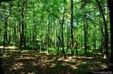 27 Deep Creek Trail - Photo 4