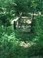 27 Deep Creek Trail - Photo 5