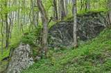 000 Rockhouse Road - Photo 29