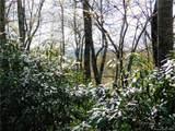 L25R Pisgah Forest Drive - Photo 11