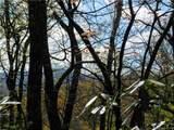 L25R Pisgah Forest Drive - Photo 12