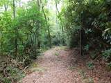 L25R Pisgah Forest Drive - Photo 17
