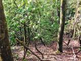 L25R Pisgah Forest Drive - Photo 3