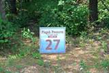 V/L 27 Pisgah Preserve Drive - Photo 2