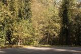 251 Fall Creek Drive - Photo 1