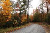 0000 Zacks Fork Road - Photo 11