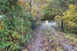 0000 Zacks Fork Road - Photo 13