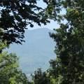 6 Cinnamon Ridge - Photo 3