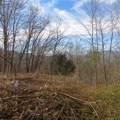 6 Cinnamon Ridge - Photo 8