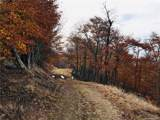 TBD Big Spring Trail - Photo 13