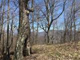 TBD Big Spring Trail - Photo 16