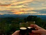 3 Carolina Sunset Pass - Photo 9