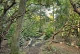 38 Raven Rock Vista - Photo 22