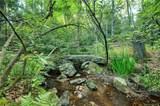 38 Raven Rock Vista - Photo 24
