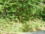 1232 Panther Creek Road - Photo 3