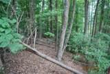 Lot 141 High Trail Drive - Photo 9