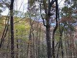 0 Camp Knob Road - Photo 11