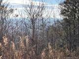 0 Camp Knob Road - Photo 15
