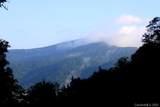 999 Bald Mountain Road - Photo 20