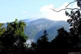 999 Bald Mountain Road - Photo 21