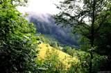 999 Bald Mountain Road - Photo 9