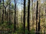 309 Acres Mountainbrook Road - Photo 41