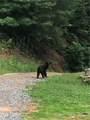 1818 Roaring Fork Road - Photo 29