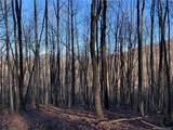 325 Boundary Tree Pass Pass - Photo 12