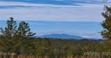 00 Big Pine Drive - Photo 4