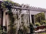 15136 Pavilion Loop Drive - Photo 42