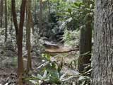 363 Bobcat Trail - Photo 46