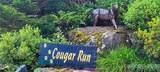 191 Cougar Run - Photo 3