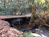 2397 Diamond Creek Road - Photo 5