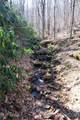 54 Great Aspen Way - Photo 10