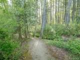 31 Deep Creek Trail - Photo 11