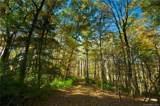 31 Deep Creek Trail - Photo 2