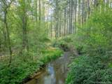 31 Deep Creek Trail - Photo 4