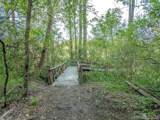 31 Deep Creek Trail - Photo 7