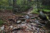 3619 Lonesome Mountain Road - Photo 11