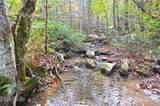 3619 Lonesome Mountain Road - Photo 22