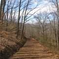 6 Cinnamon Ridge - Photo 9