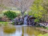 415 Brush Creek Road - Photo 40