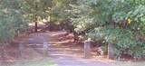4029 Beechwood Spring Lane - Photo 31