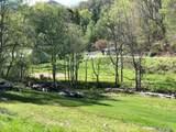 1405 Hortons Creek Road - Photo 10